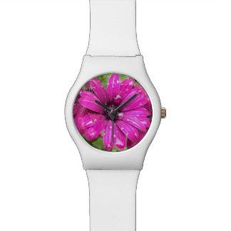 Raindrops on Purple Daisy Watch