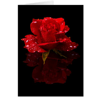 RAINDROPS ON ROSE GREETING CARD