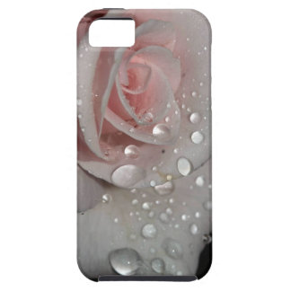 Raindrops on Rose Iphone 5 Case