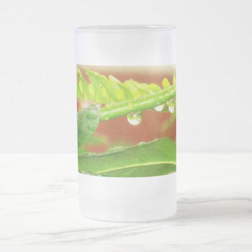 Raindrops on rose stem & leaves coffee mug