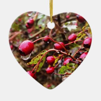 Raindrops On Rosehips Ceramic Heart Decoration