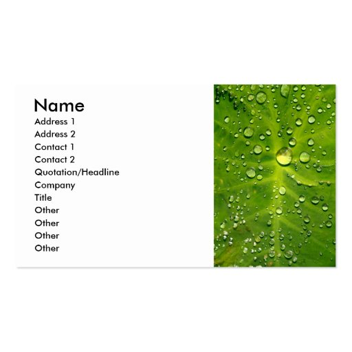 Raindrops on taro leaf business card template
