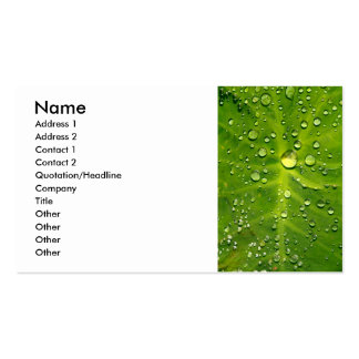 Raindrops on taro leaf pack of standard business cards