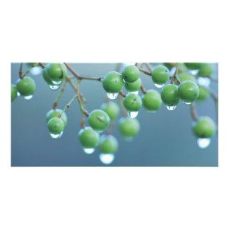 Raindrops Personalised Photo Card