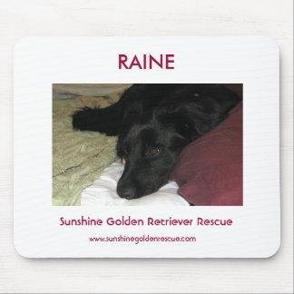 Raine - SunshineGolden Retriever Rescue Mouse Mat