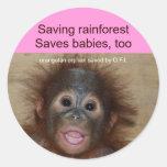 Rainforest Baby Orangutan Round Sticker