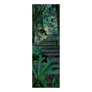 Rainforest Business Card Template