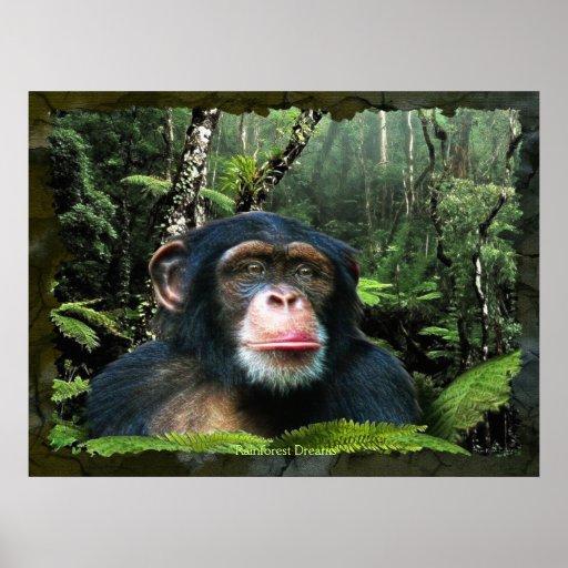 """RAINFOREST DREAMS II"" Chimpanzee Art Poster"