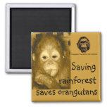 Rainforest & Orangutans Refrigerator Magnet