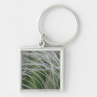 Rainforest Palm Tree Leaf Close Up Keychains