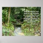 Rainforest Stream Called by God Print
