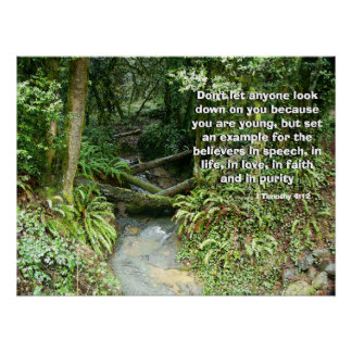 Rainforest Stream Called by God Print