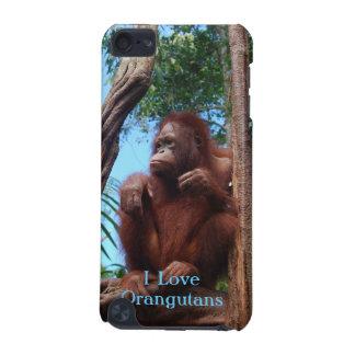 Rainforest Sunbathing - Orangutan Case