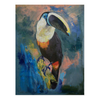 Rainforest Toucan Postcard