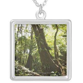 rainforest view, Dominica Silver Plated Necklace