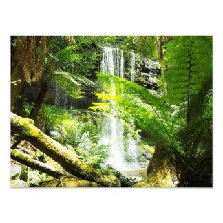 Rainforest Waterfall Art Photo