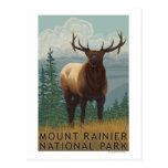 Rainier National Park, WashingtonElk Scene Post Cards