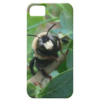 Rainy Day Bee Phone Case iPhone 5 Case