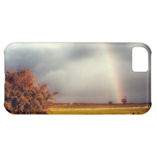 Rainy Day Rainbow iPhone 5C Case