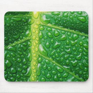 Rainy Leaf Mousepad