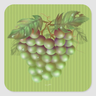 RAISAIN GRAPES  Small, 1½ inch (sheet of 20) M Square Sticker