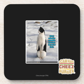 Raised by Penguins Coaster
