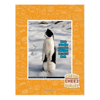 Raised by Penguins Postcard
