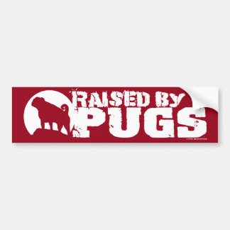 RAISED BY PUGS Red Bumper Sticker