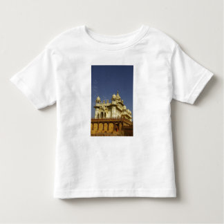 Rajasthan, India A woman standing at and accient Toddler T-Shirt