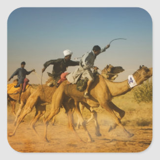 Rajasthan, India camel races in the Thar Desert Square Sticker