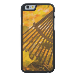 Rake And Leafs Carved® Maple iPhone 6 Case