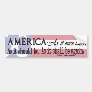 Rallying cry of The Deplorables. Bumper Sticker