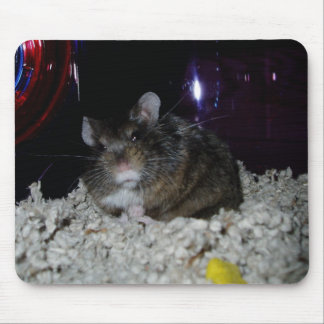 Ralph's Mouse, errr, Hamster Pad Mouse Pad