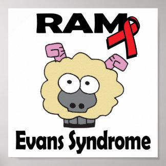 RAM Evans Syndrome Poster