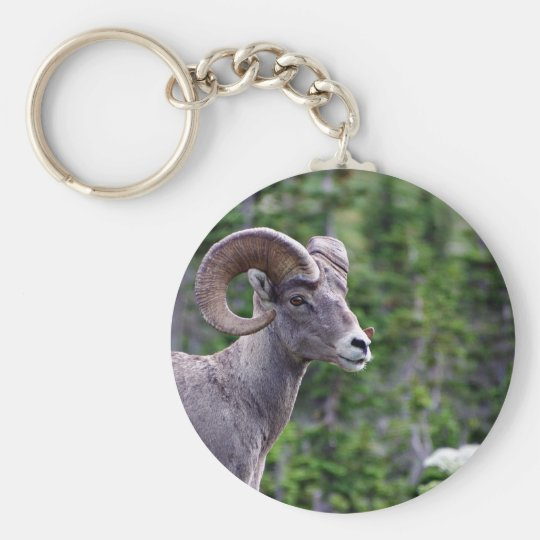 Ram in a Field Basic Round Button Key Ring