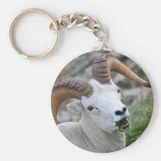 ram basic round button key ring