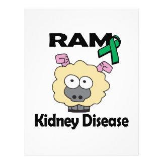 RAM Kidney Disease 21.5 Cm X 28 Cm Flyer