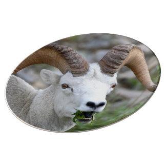 Ram Porcelain Plate