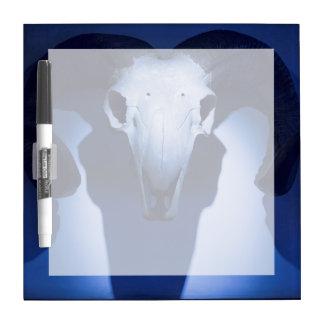 Ram Skull, Santa Fe, New Mexico. USA Dry Erase Board