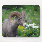 Ram - Smelling the Flowers Mouse Mat