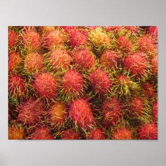 Rambutan Tropical Fruit Poster