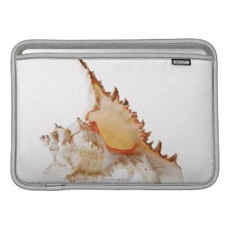 Ramose Murex (Chicoreus ramosus) shell against Sleeve For MacBook Air
