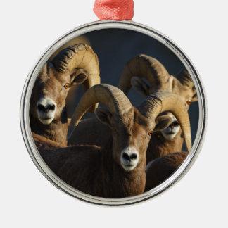 rams christmas ornament