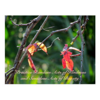 Random Acts of Kindness Postcard - Fall Leaves
