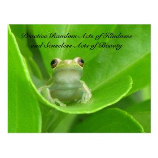 Random Acts of Kindness Postcard - Green Tree Frog