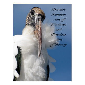 Random Acts of Kindness Postcard - Wood Stork