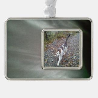 Random fabric silver plated framed ornament