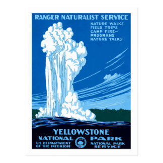 Ranger Naturalist Service ~ Yellowstone Postcard