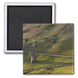 Rano Raraku, Rapa Nui, Easter Island, Chile Magnet