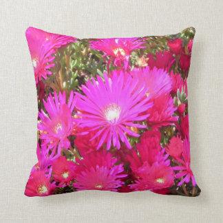 Ranunculus Cushion